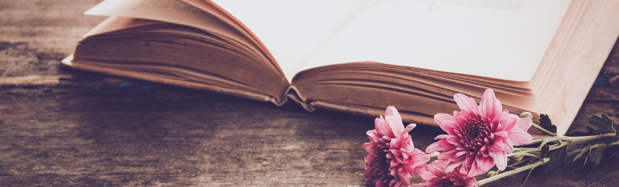 Frühling-Buch-Blumen-Holzbank